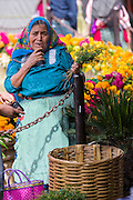An elderly Zapotec woman selling fresh cut flowers at the Sunday market in Tlacolula de Matamoros, Mexico. The regional street market draws thousands of sellers and shoppers from throughout the Valles Centrales de Oaxaca.