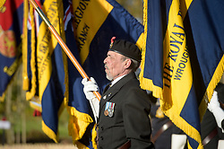 Royal British Legion standard bearers lower their standards in the Royal Wootton Bassett Field of Remembrance at Lydiard park, Swindon, as it opens to honour and remember those who have been lost serving in the Armed Forces.