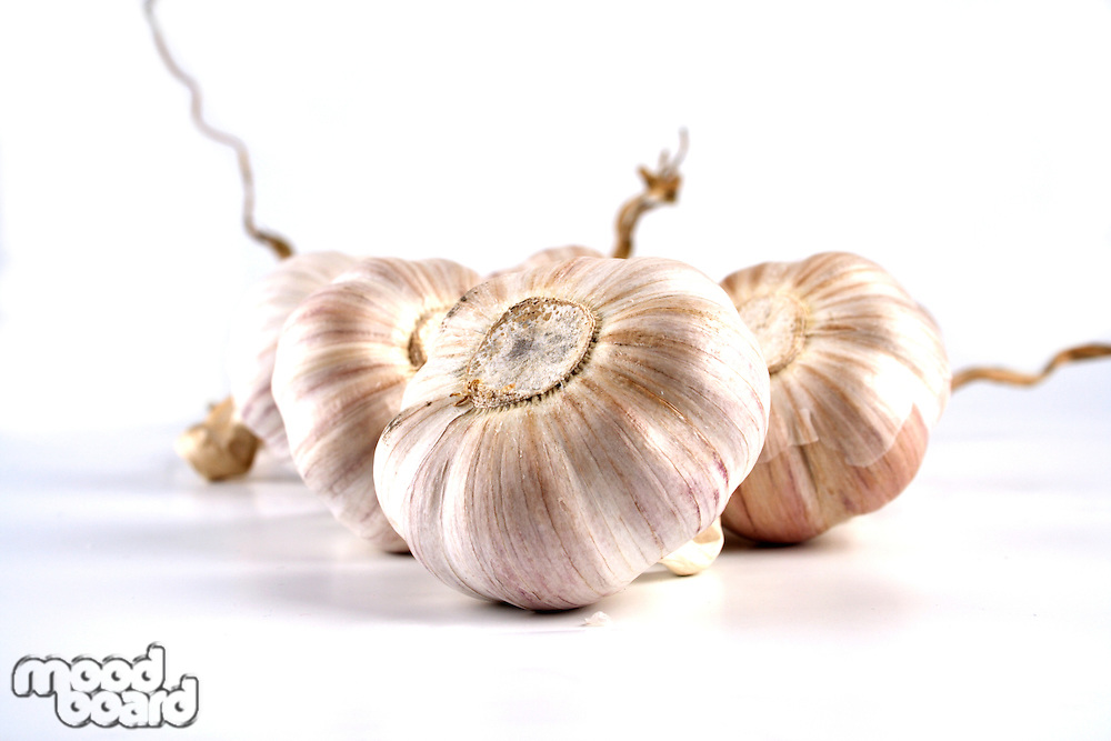 Garlic on white background - close-up