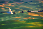 Rolling hills of the Palouse, Washington.