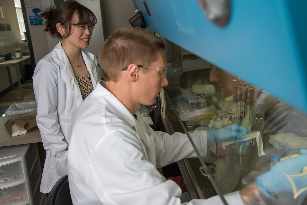 Monica Burdick (right) works with graduate student Eric Martin in her lab. Photo by Ben Siegel