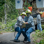 JULY 19, 2018----UTUADO, PUERTO RICO---<br /> Jose Luis Gonzalez and Jose Ralat  from the Puerto Rico Electric Power Authority pull a fallen line while restoring power to a single family home.<br /> (Photo by Angel Valentin/Freelance)