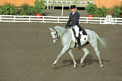 Dibowski Andreas (GER) - Ginger<br /> EK Eventing Pau 2001<br /> Photo © Dirk Caremans