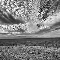 Clouds roll over an empty field outside of Firebaugh in Fresno County in California's Central Valley, CA, Friday, Oct. 14, 2016. One of the worst droughts in California history officially ended this spring in all of the state's counties except Fresno, Kings, Tulare and Tuolumne. <br />