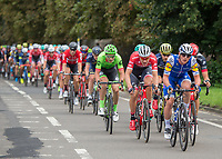 A member of Belgian Team Quick-Step Floors and Team Trek Segafredo in action at the front of the peloton as they pass through Bushy Park in the Prudential RideLondon-Surrey Classic 30/07/2017<br /> <br /> Photo: Jon Buckle/Silverhub for Prudential RideLondon<br /> <br /> Prudential RideLondon is the world's greatest festival of cycling, involving 100,000+ cyclists – from Olympic champions to a free family fun ride - riding in events over closed roads in London and Surrey over the weekend of 28th to 30th July 2017. <br /> <br /> See www.PrudentialRideLondon.co.uk for more.<br /> <br /> For further information: media@londonmarathonevents.co.uk