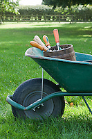 Wheelbarrow Full of Gardening Tools