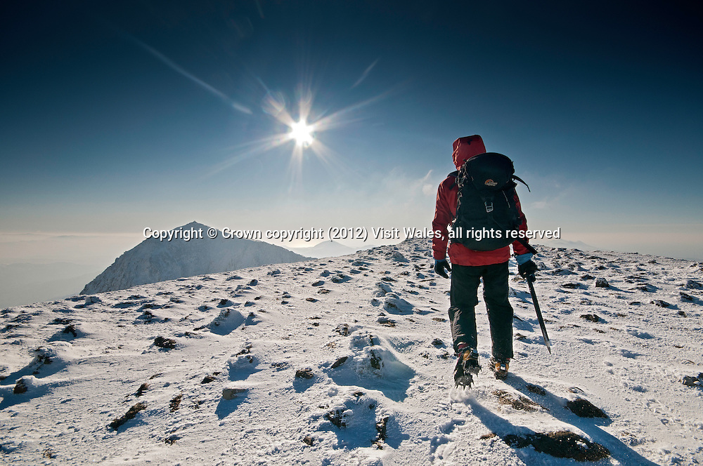 Walker / hiker / mountaineer approaching Snowdon summit in winter with heavy snow on ground<br /> Yr Wyddfa<br /> Snowdonia<br /> Gwynedd<br /> North<br /> Mountaineering<br /> Walking<br /> Activities and Sports