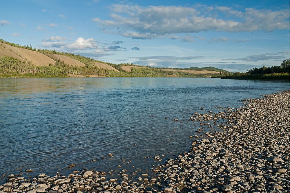 View south (upriver) of Yukon River north of Carmacks; from small island; Yukon Territory Canada