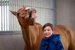 Sebrechts Max, (BEL), Fantast<br /> Optimus Agro - Broechem 2016<br /> <br /> 17/02/16