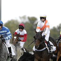 20 October 2007:  Rylee Zimmerman (L) on Gather No Moss leads Liam McVicar on Beyond Repare (C) and Roderick MacKenzie on Bow Strada (R) over a National Fence as they compete in the $30,000 L.F. Jennnings Chase during the 70th running of the International Gold Cup Races on October 20, 2007 at the Great Meadow in The Plains, Va.  The race was won by Fly Past (5) ridden by Carl Rafter with Gather No Moss (7) ridden by Rylee Zimmerman and Thrumcap (4) with Robert Walsh aboard finishing 2nd and 3rd.