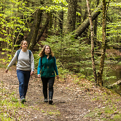 Two women walk on a forest trail next to Mill Brook in Westbrook, Maine.