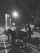 London mounted police ready to monitor a demonstration.  Photo by Dennis Brack