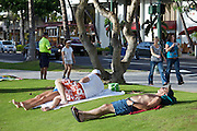 Waikiki Beach. Kalakaua Avenue. Tourists having a nap in the grass.