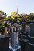 Cemetery of Komyoji Temple, Kamiyacho, Tokyo, Japan, April 13, 2019. Tokyo Tower is in the background. Matsumoto Shoukei is the author of A Monk's Guide to a Clean House and Mind (Penguin). He hold periodic cleaning sessions at his temple in Tokyo's Kamiyacho district.
