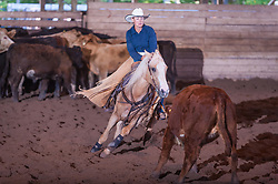 September 23, 2017 - Minshall Farm Cutting 5, held at Minshall Farms, Hillsburgh Ontario. The event was put on by the Ontario Cutting Horse Association. Riding in the $5,000 Novice Horse Class is Michelle Waters on Genuine Whyte Gold owned by Noreen Whyte.