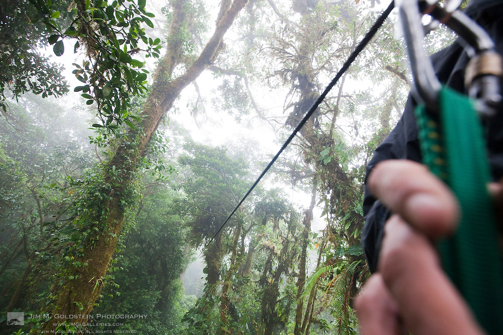 A point of view perspective into the Costa Rican rainforest at the start of a zip line canopy tour in the Monteverde Cloud Forest Reserve in Selvatura Adventure Park, Costa Rica