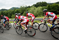 Riders of Adria Mobil during Stage 4 of 23rd Tour of Slovenia 2016 / Tour de Slovenie from Rogaska Slatina to Novo mesto (165,5 km) cycling race on June 19, 2016 in Slovenia. Photo by Vid Ponikvar / Sportida