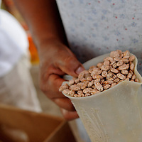 Aug 10, 2010 - Matamoros, Mexico -  Pinto beans one of the staple foods the Frank Ferree group gives people from the Colonia of Leyes De La Reforma and many colonias in the Rio Grande Valley. This organization was started by Frank Ferree, a former World War I soldier who moved to the Rio Grande Valley in Texas to farm citrus, who ended up devoting his life to helping the poor across the border from his home in Harlingen Texas. Ferree received a Presidential Medal of Freedom from the Former President Reagan and was nominated for a Nobel Peace Prize. (Credit Image: © Josh Bachman/ZUMA Press)