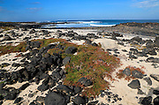 Beach rocks and white sand, near Majanicho on north coast of Fuerteventura, Canary Islands, Spain