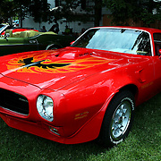&quot;1973 Trans Am&quot;<br />
