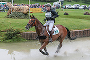 MASTER CRISP ridden by Angus Smales at Bramham International Horse Trials 2016 at  at Bramham Park, Bramham, United Kingdom on 11 June 2016. Photo by Mark P Doherty.