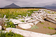 USA, Katmai National Park (AK).Coastal landscape in stormy afternoon