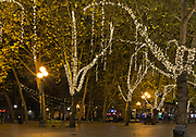 WA15076-00...WASHINGTON - Brightly lit trees brighten the walking area through Occidental Square at night in downtown Seattle.