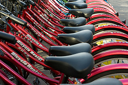 Rental Bicycles lined up on a street in Beijing China