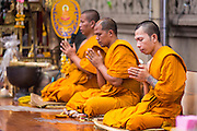 "12 OCTOBER 2012 - RAI KHRING, NAKHON PATHOM, THAILAND:  Buddhist monks lead a chanting session Wat Rai Khring in Nakhon Pathom province. Wat Rai Khring was built in 1791, the Abbot at the time, Somdej Phra Phuttha Chan (Pook), named this temple after the district. When construction was completed, the Buddha image was brought from another temple and enshrined here. Later locals named the image ""Luang Pho Wat Rai Khing"". The Buddha image is of Chiang Saen style and is assumed to have been built by Lanna Thai and Lan Chang craftsmen.     PHOTO BY JACK KURTZ"