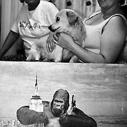 APUNTES SOBRE MI VIDA: LA PASTORA I - 2009/10<br /> Photography by Aaron Sosa<br /> Castillitos, Casa de Tiuna Rodriguez. este cuadro de King Kong esta lleno de recuerdos. En mi infancia siempre estuvo en la pared. Hoy en dia evita que el perro se escape de la casa.<br /> La Pastora, Caracas - Venezuela 2010<br /> (Copyright © Aaron Sosa)