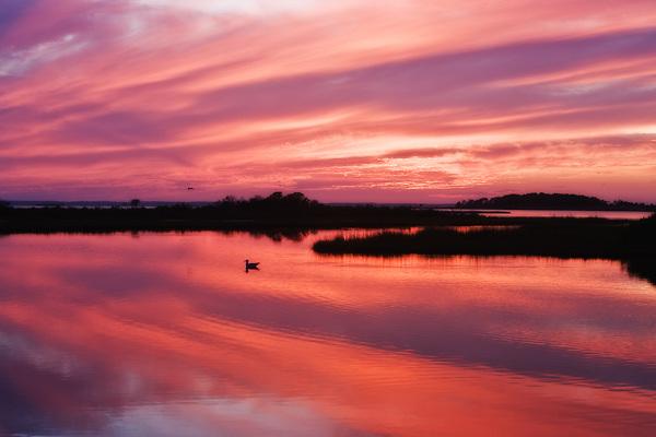 Assateague Island Sunset