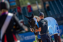 Wells Sophie, GBR<br /> World Equestrian Games - Tryon 2018<br /> © Hippo Foto - Sharon Vandeput<br /> 18/09/2018