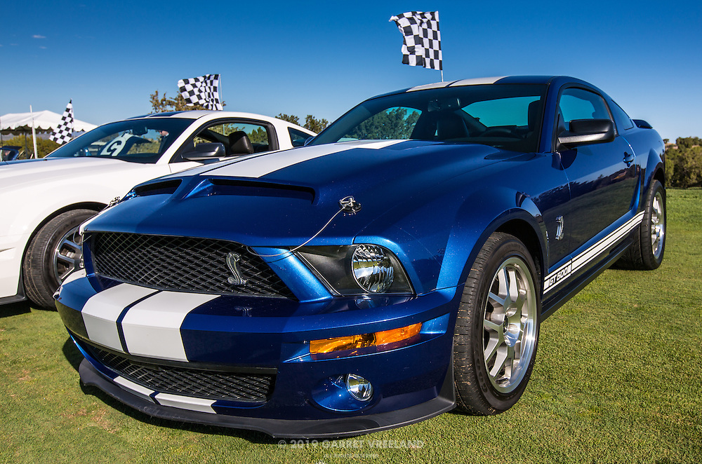 2013 Shelby GT500 in the Shelby Paddock at the 2012 Santa Fe Concorso.