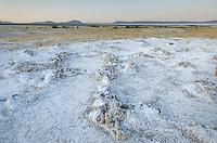 Mineral desposits on dry lakebed, Alvord Desert Oregon