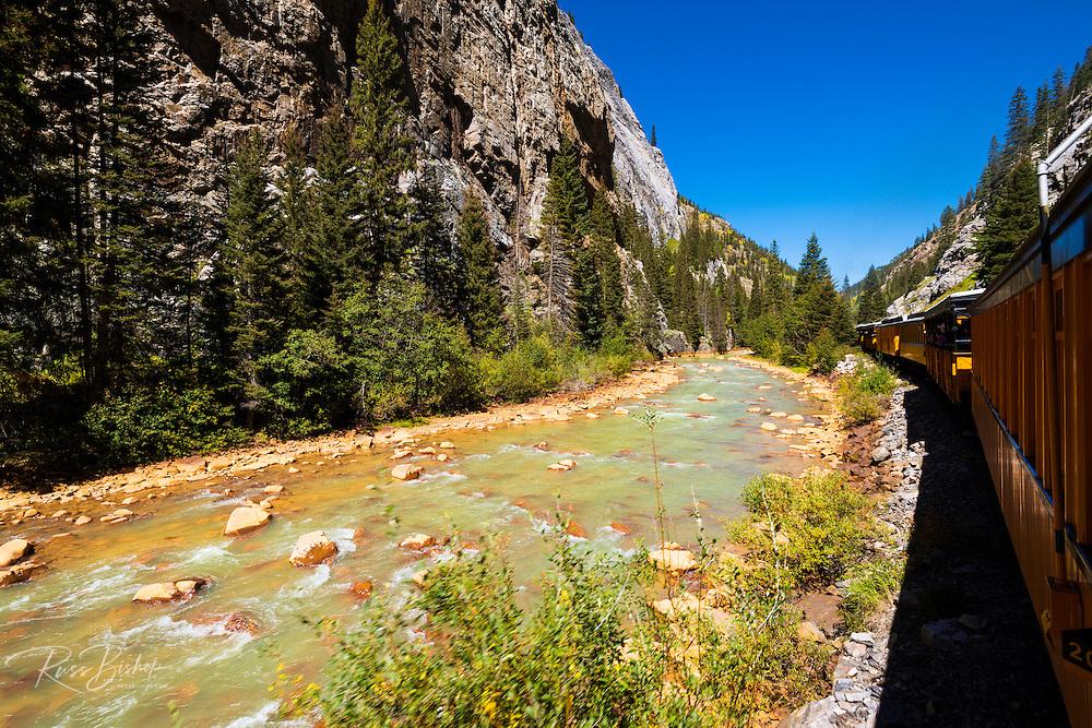 The Durango & Silverton Narrow Gauge Railroad on the Animas River, San Juan National Forest, Colorado USA