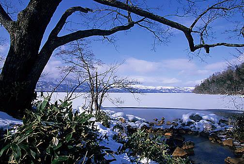 Japan, Lake Kussharo.