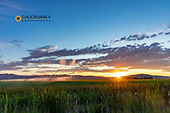 Pivot Irrigation at sunset in the Mission Valley near Charlo, Montana, USA