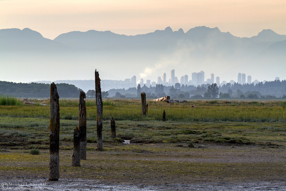 Burnaby's Metrotown and the North Shore (Pacific Coast Range) Mountains.  Photographed from Blackie Spit in Surrey, British Columbia, Canada