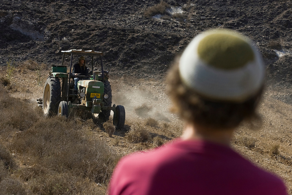 An Israeli settler ploughs  the earth of a field in Havat Gilad.