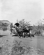Second Boer War 1899-1902: Horse-drawn covered hospital cart with Indian driver used by British in South Africa during the Boer War.  Medicine Ambulance  Military British Colonialism