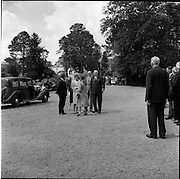 11/06/1961<br /> 06/11/1961<br /> 11 June 1961<br /> Princess Grace visits the National Stud.<br /> Royal Visit to Ireland by Princess Grace and Prince Rainier of Monaco. The royal couple visit the National Stud at Tully, Co Kildare.