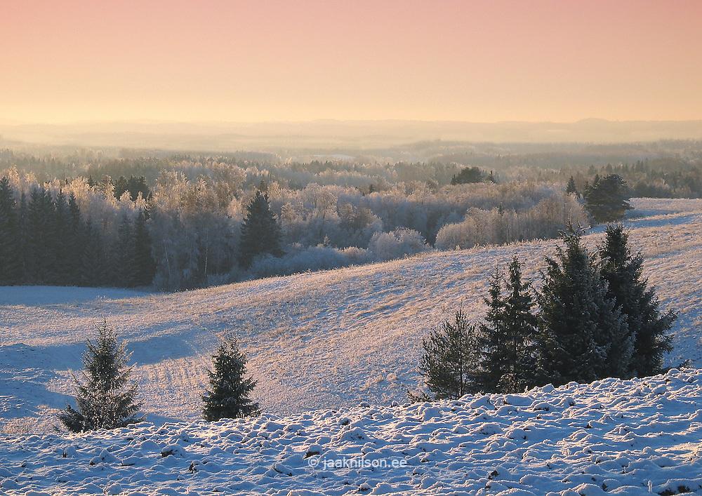 Sunset Over Hilly Snowy Landscape Near Leigo in Winter, Valga County, Estonia