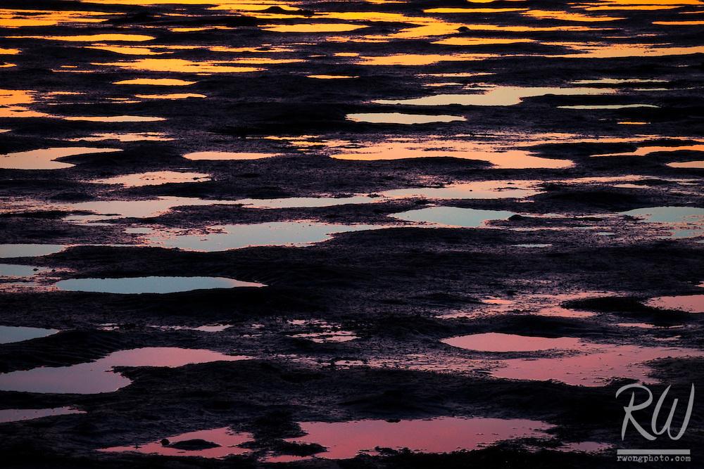 Low Tide Reflections at Robert Crown Memorial State Beach, Alameda, California