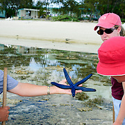 A ranger leads a nature reef walk in the lagoon at Lady Elliot Island showing a blue sea star (starfish)