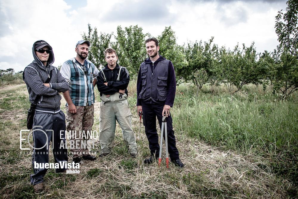 Emiliano Albensi<br /> 30/05/2013 Roma<br /> Ritorno alla terra<br /> Nella foto: Giacomo Lepri, 28 anni, e alcuni colleghi e amici della Cooperativa Co.br.ag.or mentre lavorano