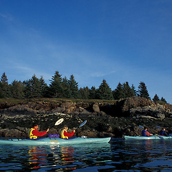 Kayaking Mt. Desert Narrows on the northern side of Mount Desert Island in Maine's Acadia National Park.