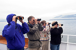 Alaska, Glacier Bay National Park..People looking at bear, Sandy Cove..Cruise on Spirit of Discovery..Photo copyright Lee Foster, 510/549-2202, lee@fostertravel.com, www.fostertravel.com..