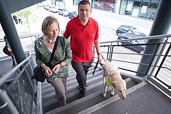 Vision impaired man with sighted guide and guide dog going up some steps together;
