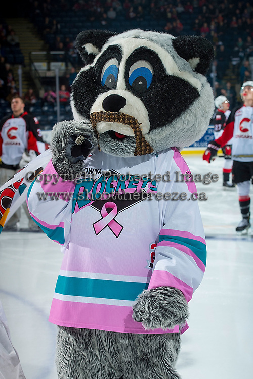 KELOWNA, CANADA - NOVEMBER 29: Rocky Raccoon, the mascot of the Kelowna Rockets stands on the ice at the start of the game against the Prince George Cougars  on November 29, 2017 at Prospera Place in Kelowna, British Columbia, Canada.  (Photo by Marissa Baecker/Shoot the Breeze)  *** Local Caption ***