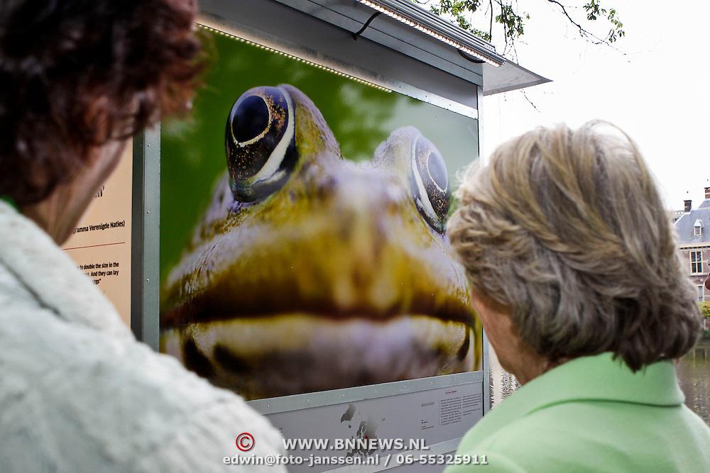 NLD/Den Haag/20100527 - Opening tentoonstelling Wild Wonders of Europe door Prinses Irene in Den Haag